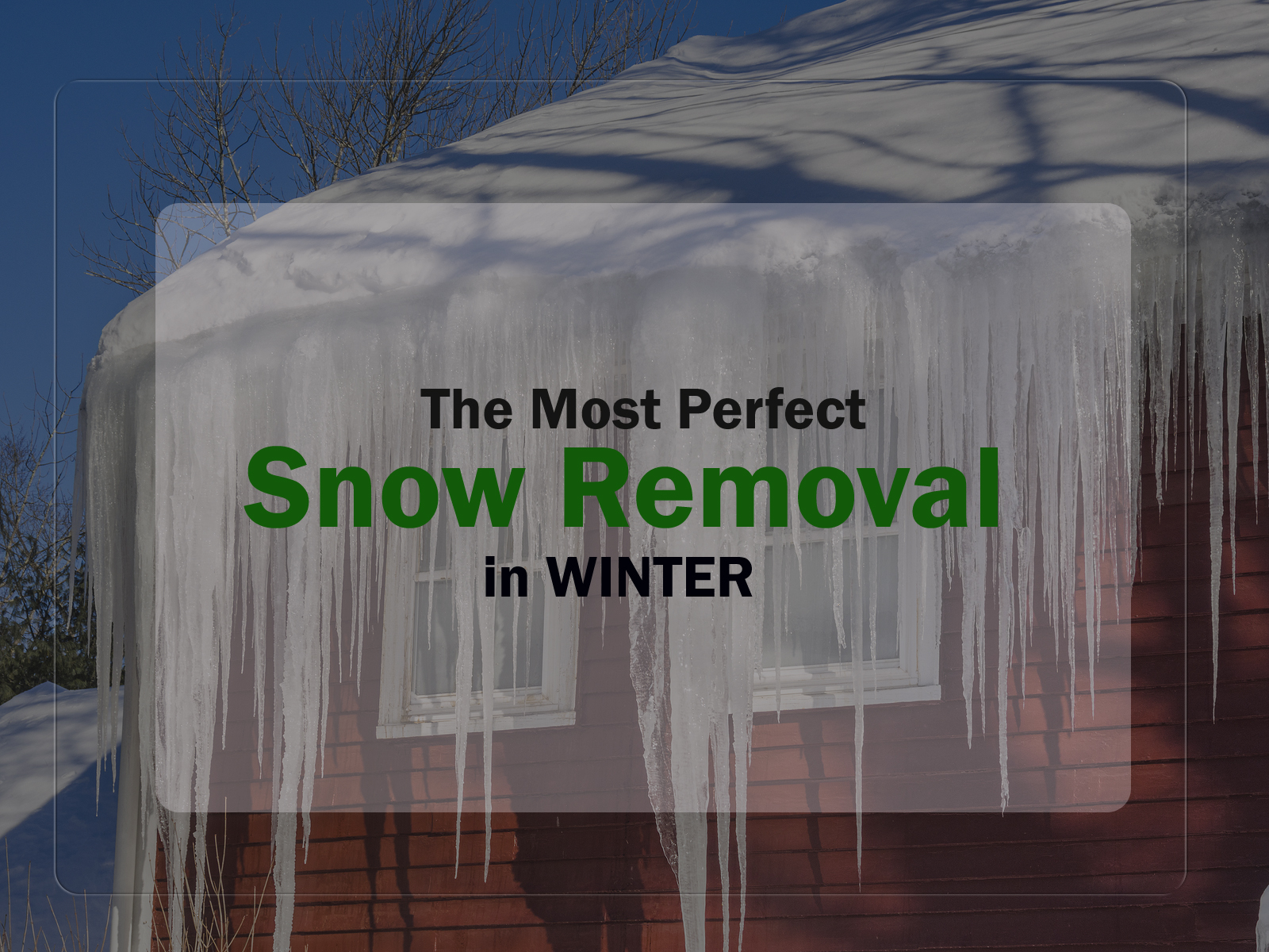 Best Steps for the Most Perfect Snow Removal in Winter